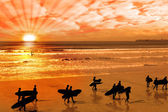 Surfers walking on glorious sunset beach — Stock Photo