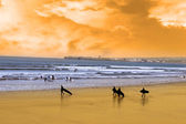 Young surfers walking on sunset beach — Stock Photo