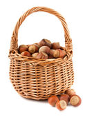 Wicker basket with hazelnuts — Stock Photo