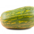 Green squash - Stock Photo