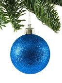 クリスマス ボールと緑の小ぎれいなな枝 — ストック写真