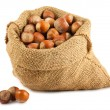 Canvas bag with hazelnuts - Stock Photo