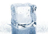 Single ice cube — Stock Photo