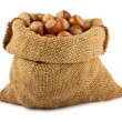 Canvas bag with ripe hazelnuts — Stock Photo