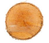 Cross section of tree stump — Stock Photo