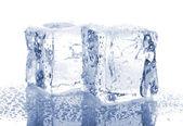 Twee ijsblokjes — Stockfoto