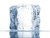 Single ice cube with water drops — Stock Photo