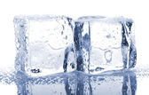 Pair of ice cubes — Stock Photo