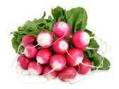 Bunch of radishes isolated on white background — Stock Photo