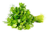 Bunch of parsley isolated on white background — Stock Photo