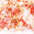 Dry roses beautiful, artistic background — Stock Photo #10005006