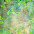 Natural leaves grunge beautiful, artistic background — Stock Photo
