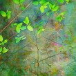 Natural leaves grunge beautiful, artistic background — Stock Photo #10005409