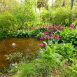 Small pond in the old garden — Stock Photo