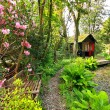 Beautiful romantic garden in Springtime — Zdjęcie stockowe #10536523