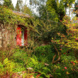 Old garden with an old cottage - Stock Photo