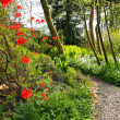 Beautiful Spring garden with red azalea and cobblestones path - Stock Photo