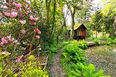 Prachtige romantische tuin in het voorjaar — Stockfoto