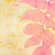 Beautiful artistic background with fern leaf. — Stock Photo