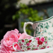 Pink roses and an elegant teacup in the garden — Stock fotografie