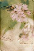 Antika arka plan bahar çiçekleri ile — Stok fotoğraf
