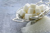 Several types of sugar - refined sugar and granulated sugar — Stock Photo