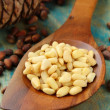 Pine nuts in a wooden spoon — Stock Photo