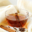 Tea with spices - cinnamon, a carnation and an anise — Stock Photo #8666863