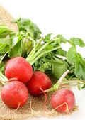 Red ripe radish on white background. — Stock Photo