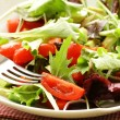 Mix salad (arugula, iceberg, red beet) in a bowl on the table — Stock Photo #9112768