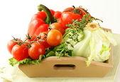 Diferentes legumes frescos em uma tigela de madeira — Foto Stock
