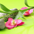 Branch of bamboo, stones and orchids on a green background, spa concept — Stock Photo