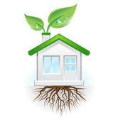 Gröna huset — Stockvektor
