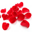 Red rose petals — Stock Photo #10627512