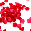 Red rose petals — Stock Photo #10627619