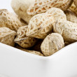 Peanut in shelled — Stock Photo
