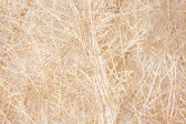Straw texture for craft — Stock Photo
