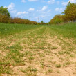 Stock Photo: Wide rural dirt road