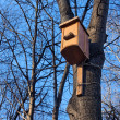 Bird house on the trunk — Stock Photo