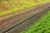 Rail lines in hollow — Stock Photo