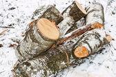 Birch logs on the snow — Stock Photo