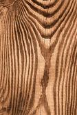 Planche à découper en bois. sépia — Photo