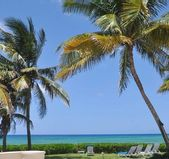 Caribbean scene — Stock Photo