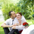 Stock Photo: Bride and groom sitting on the grass