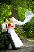 Bride and groom — Stock Photo