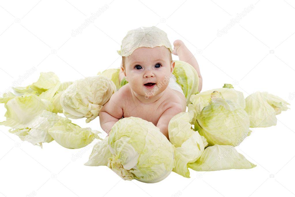 在白色背景上白菜宝宝