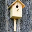 Birdhouse — Foto Stock #10608305
