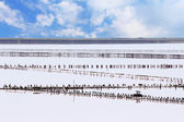 Salt production on Sivash lake — Stock Photo