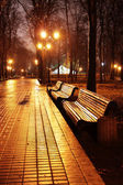 Mariinsky park at night — Stock Photo