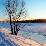 Frozen river — Stock Photo #8746649